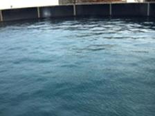 Raw water tanks